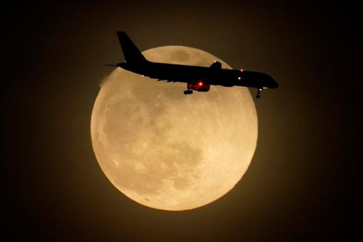 Một máy bay bay qua siêu trăng hồng ởLouisville, bang Kentucky (Mỹ).