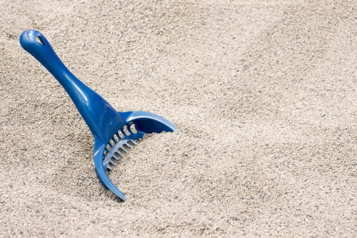 Cát vệ sinh cho mèo: Nghe có vẻ lạ, nhưng cát vệ sinh cho mèo chứa rất nhiều các chất khử mùi và có khả năng hút ẩm. Bạn chỉ cần đặt giày vào trong cát vệ sinh cho mèo rồi để qua đêm, sau đó lau sạch giày với vải ướt vào sáng hôm sau.