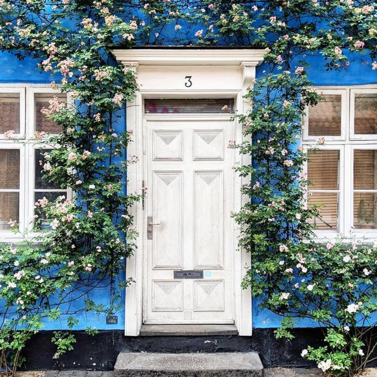 Những khung cửa tuyệt đẹp khiến người qua đường không thể rời mắt.