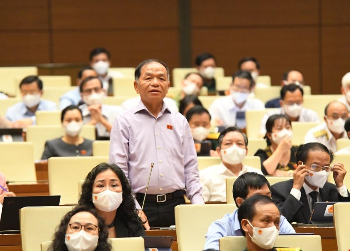 Đại biểu Lê Thanh Vân.