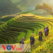 Việt Nam-Đất nước-Con người