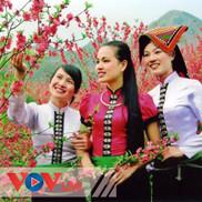Dân ca các dân tộc thiểu số Việt Nam