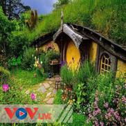Bí mật ngôi nhà trong cỏ
