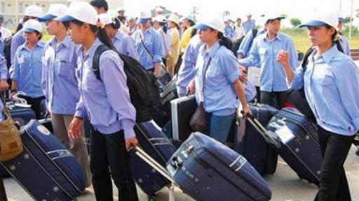 Nghị định 38/2020/NĐ-CP đưa người lao động Việt Nam đi làm việc ở nước ngoài