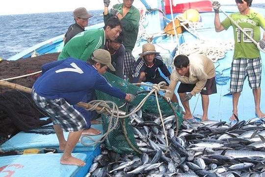 """Tác phẩm """"Phát triển nghề cá bền vững, có trách nhiệm"""" - Giải vàng LHPT lần thứ XIV"""