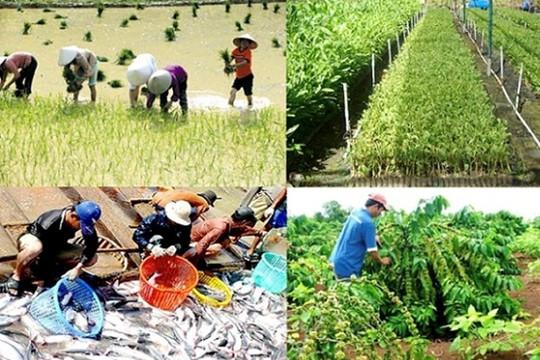 Nông nghiệp tiếp tục là trụ đỡ của nền kinh tế trong đại dịch