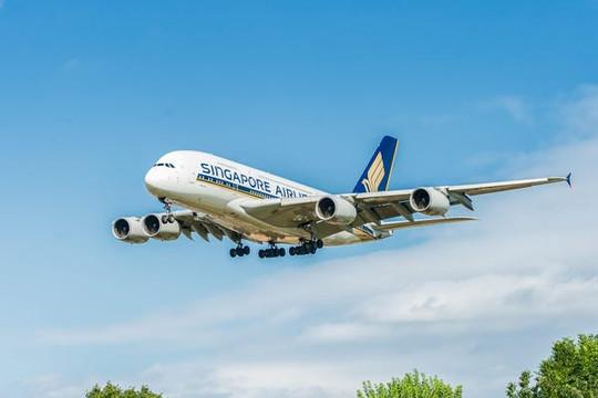 Cách kiếm tiền mới mùa dịch: Bay vòng quanh các điểm du lịch rồi quay lại nơi cất cánh