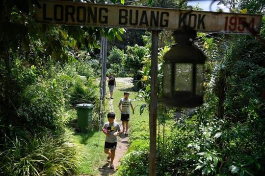 """""""Làng trong phố"""" - Điểm đến du lịch thời Covid-19 ở Singapore (7/10/2020)"""
