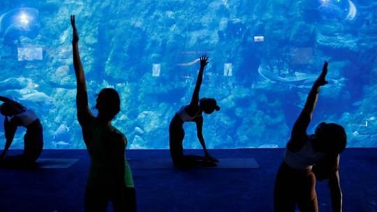 Trải nghiệm tập yoga giữa lòng đại dương. (10/10/2020)