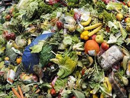 Ngày lương thực thế giới: Làm gì để tránh thất thoát lãng phí lương thực thực phẩm? (16/10/2020)