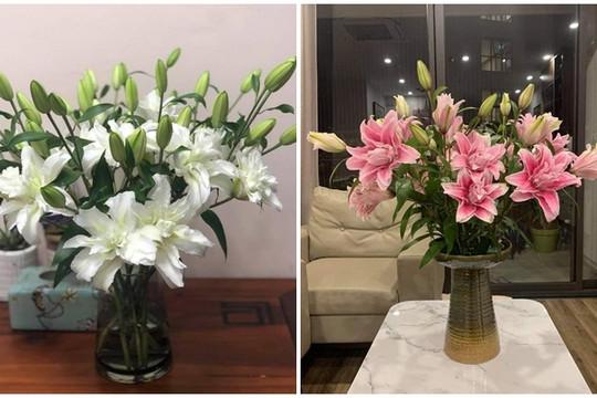 Hoa ly kép độc lạ đắt hàng ngày giáp Tết