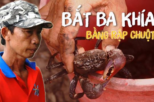 Tuyệt chiêu bắt ba khía bằng bẫy chuột của nông dân Cà Mau