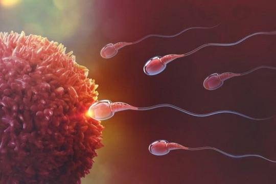 Làm thế nào để tăng cơ hội có thai tự nhiên?